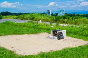 阿賀野川フラワーライン-スペース