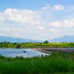 阿賀野川フラワーライン-阿賀野川