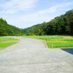 和島オートキャンプ場_Bサイト全景